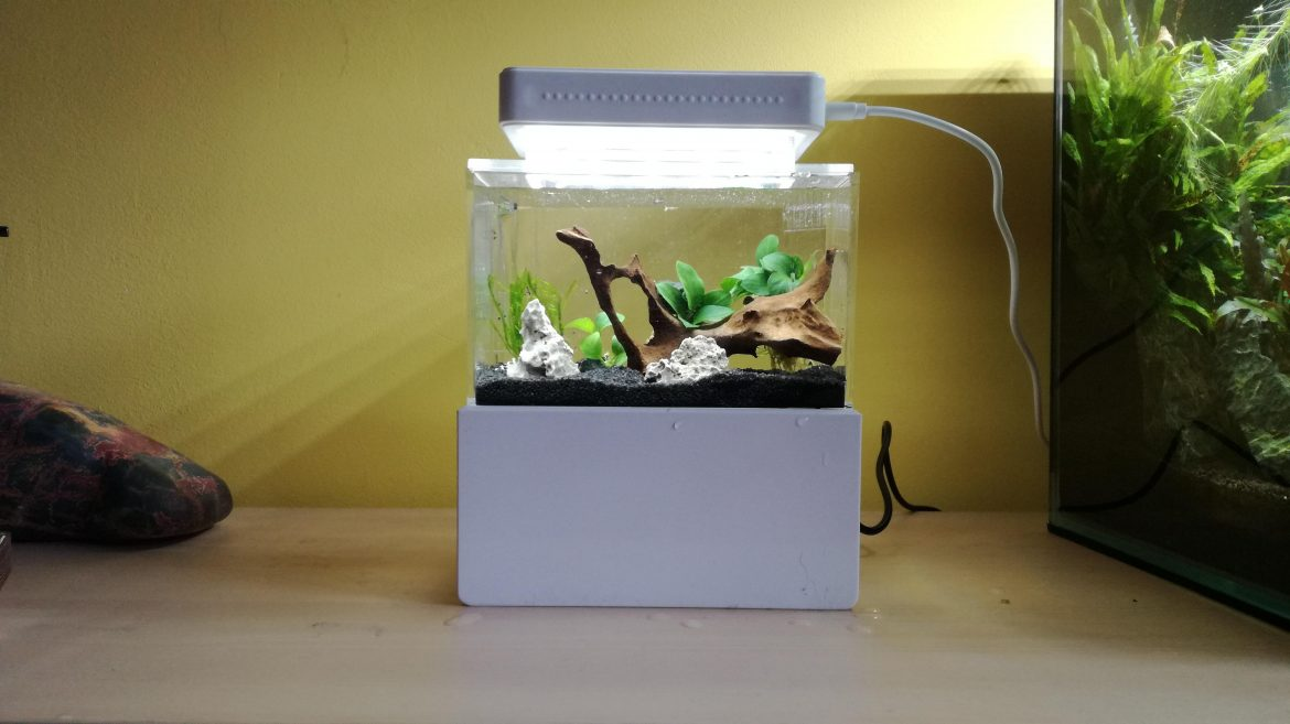 Why You Should Use a Calculator For Determining Aquarium Volume