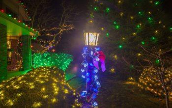holiday lights company